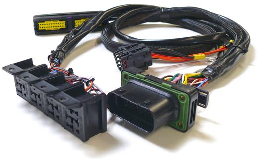 faisceau-avec-gros-connecteurs